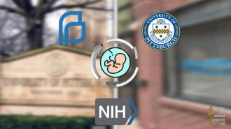 Ερευνητές του Πανεπιστημίου του Pittsburgh συλλέγουν όργανα από μωρά που έχουν εκτρωθεί, ενώ αυτά είναι ακόμα ζωντανά